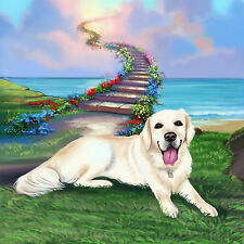 Pet portrait with background drawing from photo, digital caricature as best gift