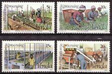 Venda 1980 Mi 26-29 Theeteelt, Tea cultivation MNH