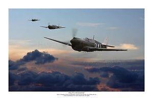 """WWII WW2 RAAF Curtiss P-40 Warhawk Kittyhawk Aviation Art Photo Print - 8"""" X 12"""""""