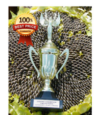 60pcs++ Israeli_Giant Seeded Sunflower Seeds * Giant seeds _ GIGANTIC MONSTER**