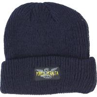 Powell Peralta Logo Skateboard Beanie Blue