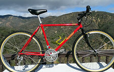 Vintage 86  Ritchey Ascent Comp  handcrafted Classic By Tom Ritchey -Rolling Art