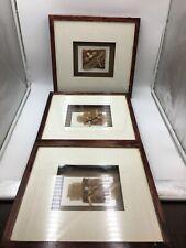 Shells And Burlap Shadow Box Wall Art Set Of 3