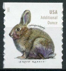 USA 2021 MNH Wild & Domestic Animals Stamps Rabbits Brush Rabbit 1v S/A Coil Set