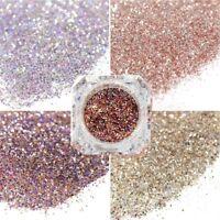 Nail Art Glitter Polvere polvere per gel UV Acrilico Polvere Paillettes
