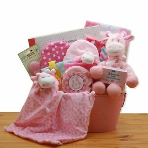 GBDS-Comfy & Cozy  Safari Friends New Baby Gift Basket - Image coming soon!