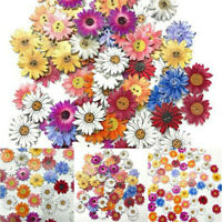 50Pcs 2-Holes Mixed Boho Flower Wooden Button Sewing Scrapbooking DIY Crafts