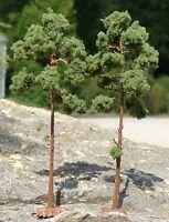 6-STÜCK KIEFERN Bäume NADELBÄUME mit Fuß 16cm hoch in TOP QUALITÄT          5F-3