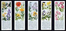 Pre - 2nd World War Flowers/Garden Collectable Tea Cards