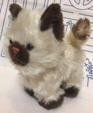 """American Girl Cat Kitten Siamese Plush Stuffed 5"""" Himalayan Poseable Doll Brown"""