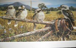 "Gordon Hanley Prints - Kookaburras - Wildlife ""The Hub"" Open Edition"