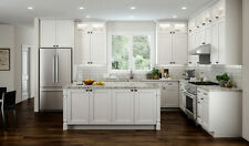 All Wood RTA 10X10 Transitional Shaker Kitchen Cabinets in Elegant White, Modern
