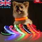 USB Rechargeable LED Pet Dog Collar Flashing Luminous Safety Light Up Nylon UK