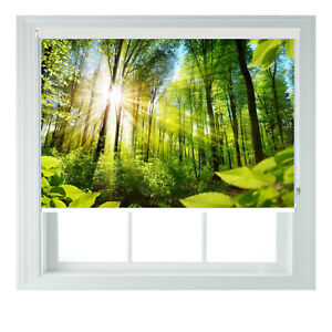 Green Forest Sunshine Printed Photo Black Out Roller Blinds 2 3 4 5 6ft
