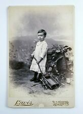 Cabinet Card Photo Child With Wagon Painted Backdrop Hudson Mass