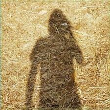 Unreleased Electronic Music von Steven Wilson (2015)