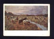 Horses Collectable Animal Postcards