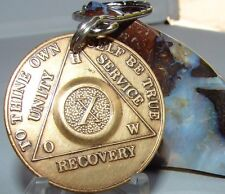 Alcoholics Anonymous AA 10 Year Bronze  Medallion Keychain Token coin chip Sober