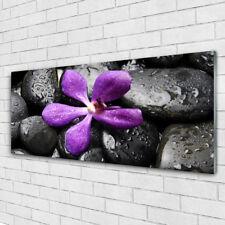 Acrylglasbilder Wandbilder aus Plexiglas® 125x50 Blume Steine Kunst