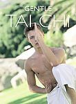 Gentle Tai Chi (DVD, 2004)