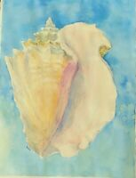 Large Shell Conch Original Watercolor Painting~ RAMfish Artist Listen to the Sea