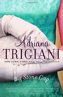 Complete Set Series - Lot of 4 Big Stone Gap books by Adriana Trigiani Home to