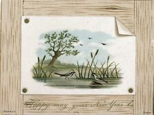 Victorian New Year Card, Birds in Pond, J. F. Schipper & Co. Copyright