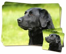 Black Labrador Dog Twin 2x Placemats+2x Coasters Set in Gift Box, AD-L1PC