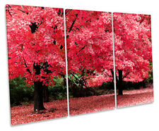 Rosa árbol de otoño lona triple pared arte cuadro enmarcado cuadro