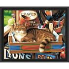 Cat Signs Kit & Frame Paint-by-Number Kit