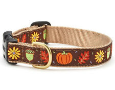 Up Country - Dog Puppy Collar - Made In USA - Harvest Time - XS S M L XL XXL