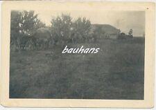 Foto Russland Soldaten -Dorf-Planwagen  2.WK (h477)