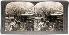Keystone Stereoview Cherry Blossoms/Tea House, JAPAN from 1910s Education Set #A