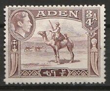 1939 ADEN  3/4a DEFINITIVE SG 17 M/MINT