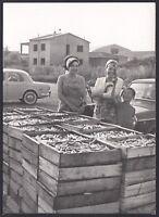 YZ1062 Porto Garibaldi - Veduta animata - Fotografia d'epoca - 1965 old photo