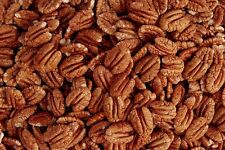 Pecans Cookbook, 419 Recipes eBook in PDF on CD FREE SHIPPING