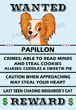 Papillon Dog Wanted Poster Flex Fridge Magnet 2.75 X 4.0 Inches
