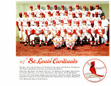 1967 ST. LOUIS CARDINALS 8X10 TEAM PHOTO WORLD SERIES CHAMPION  BASEBALL
