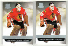TONY ESPOSITO 2011-12 Upper Deck THE CUP #20 Base NMMT lot xxx/249 Blackhawks