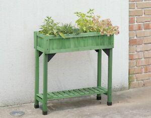 Herb Garden - Sage Green