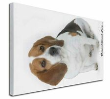 More details for beagle dog 'unconditional love' x-large 30