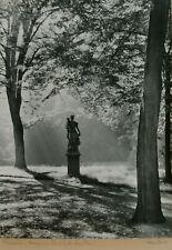 """Großes Originalfoto von Max Baur """"Sanssouci; Morgen am Standbild der Fora"""", rar!"""