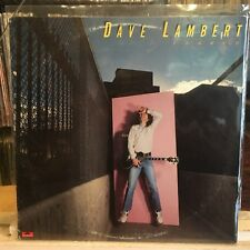 [ROCK/POP]~NM LP~DAVE LAMBERT~Framed~{Original 1979~POLYDOR~WLP PROMO~Issue]