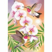 5D Full Diamond Painting DIY Hummingbird Embroidery Cross Stitch Kit Craft Decor