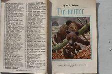 28467 Groschenheft D. Roberts Tiermütter um 1925 Jugendbücherei Nr. 260 Hillger