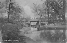 1908 Cook Park, Canton, Ohio Postcard