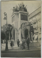 PHOTO ANCIENNE - VINTAGE SNAPSHOT - STATUE FONTAINE ÉLÉPHANT MONUMENT CHAMBERY