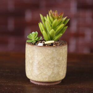 1pc Ice-Crack Glaze Flower Ceramics Succulent Plant Pot Office Flowerpot Decor