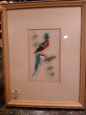 Vintage Mexican Feather Craft Bird Pictures Wood Frame Folk Art