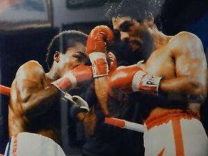 Sugar Ray Leonard Vs Roberto Duran Licensed 16x20 Boxing Action Glossy Photo!!
